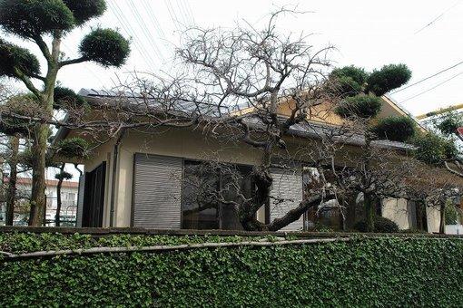 熊本市湖東 S邸